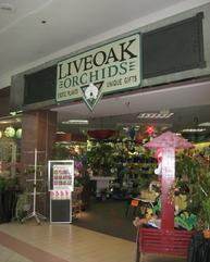 liveoak orchids, savannah mall